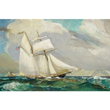 1007817 FREEDOM SCHOONER AMISTAD s/n Lithograph
