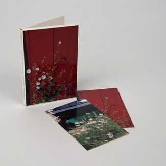 Flowers & Beach Notecards